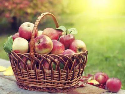Когда будет Яблочный Спас
