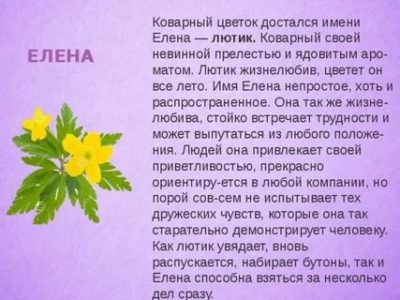 Что значит имя Елена По церковному