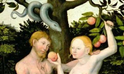 Что за плод вкусила Ева