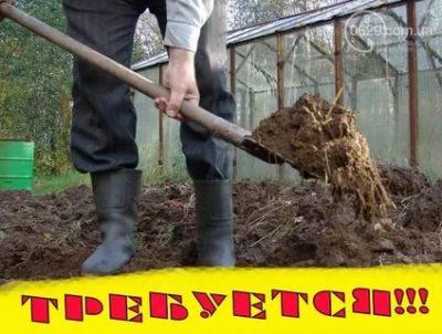 Можно ли работать на земле после Покрова