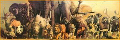 Сколько животных было в ковчеге